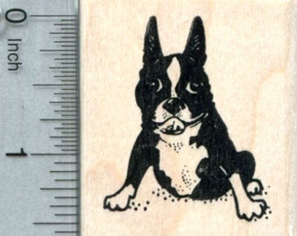 Boston Terrier Rubber Stamp, Dog