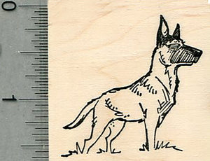 Belgian Malinois Rubber Stamp, Dog Standing