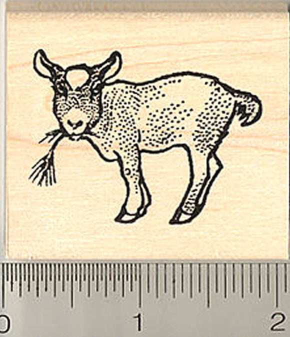 Pygmy Goat Kid Rubber Stamp