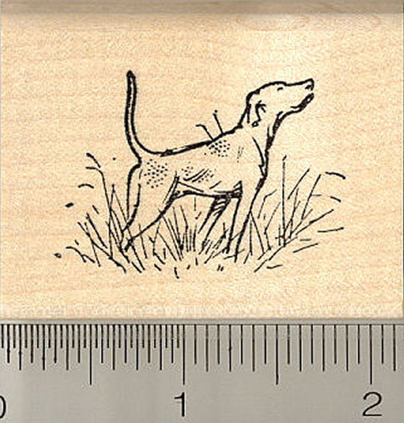 English Pointer Dog Rubber Stamp