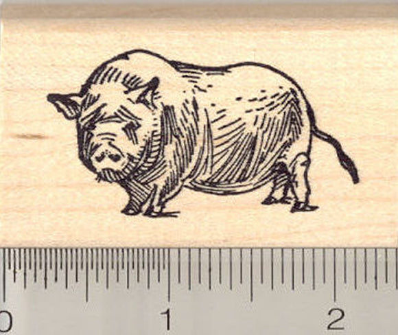 pot bellied pig rubber stamp rubberhedgehog rubber stamps