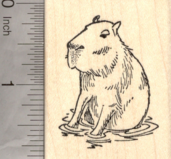 Capybara Rubber Stamp