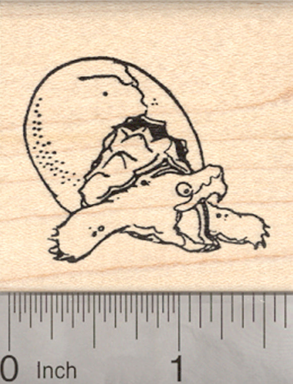 Baby Snapping Turtle Hatching Rubber Stamp
