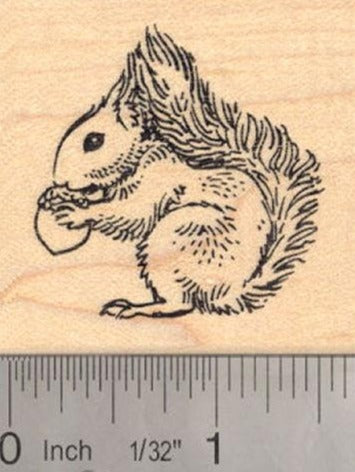 Red Squirrel Rubber Stamp Great Britain, Ireland
