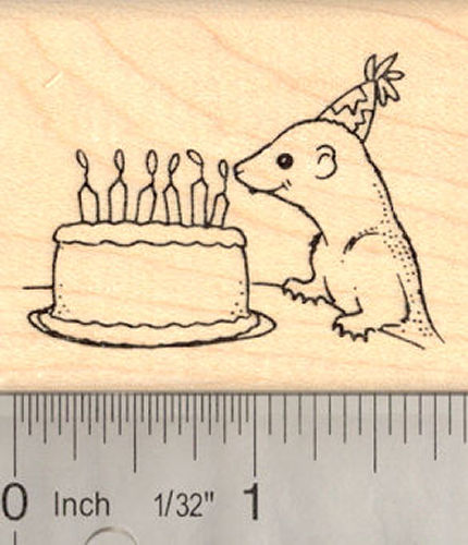 Ferret Birthday Rubber Stamp