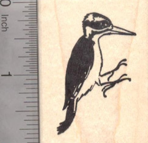 Hairy WoodPecker Rubber Stamp