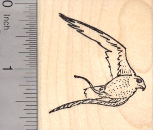 Falcon in Flight with Flying Jesses, Falconry Rubber Stamp