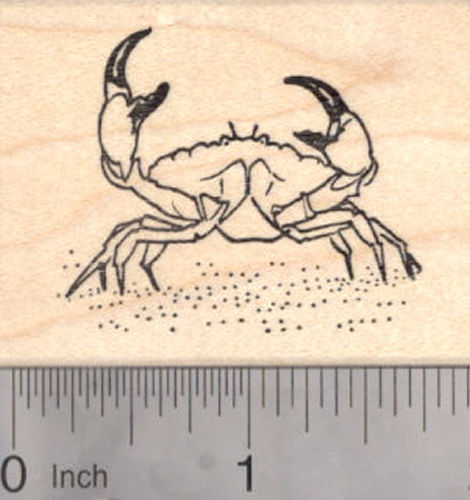 Crab Rubber Stamp, Stone Crab, Fish