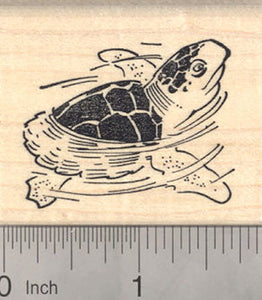 Wood Mounted Box Turtle Rubber Stamp