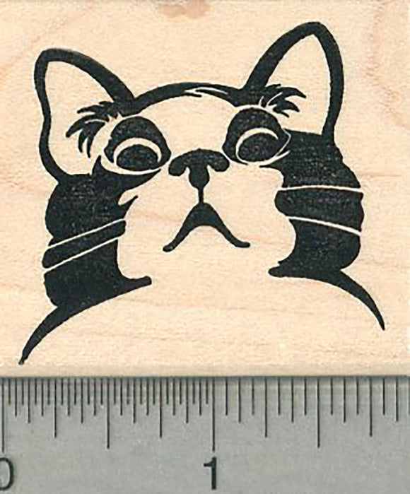Appalled Cat Rubber Stamp, Disapproving Kitty