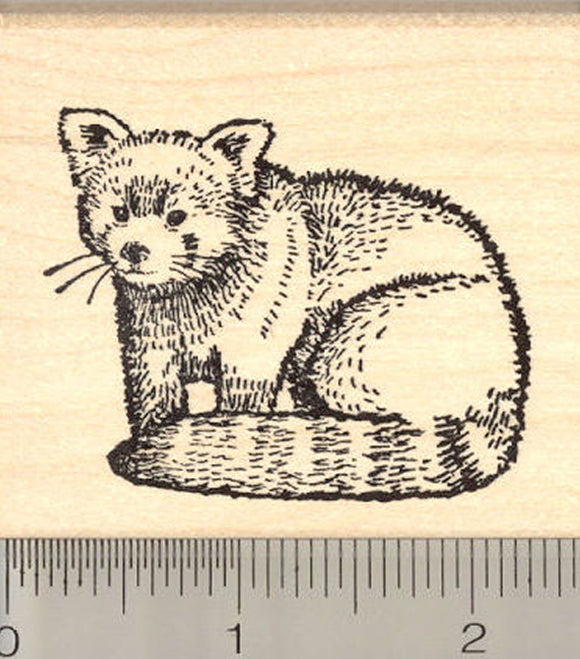 Red Panda Rubber Stamp, Lesser or Red Cat-Bear, Arboreal Mammal of China and the Himalayas