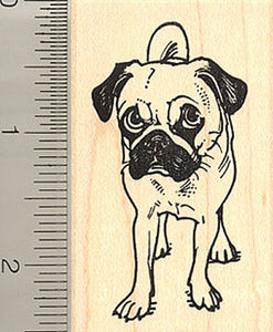 Adorable Pug Standing - Rubber Stamp