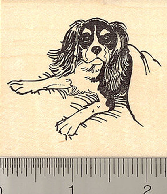Cavalier King Charles Spaniel Rubber Stamp