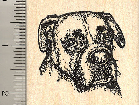 Detailed Boxer Dog Portrait Rubber Stamp (Riggley)