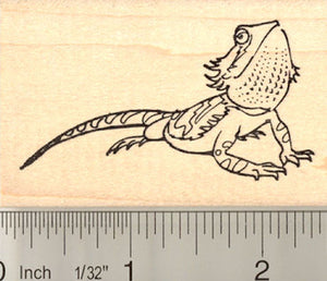 Bearded Dragon Rubber Stamp