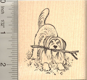 Bearded Collie Dog Rubber Stamp