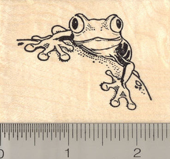Tree Frog Rubber Stamp