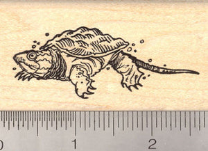 Baby Snapping Turtle Rubber Stamp