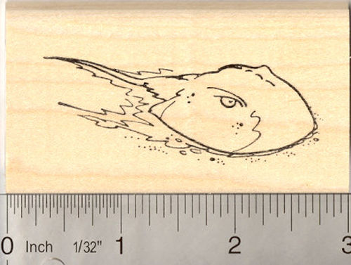 Horseshoe Crab Rubber Stamp