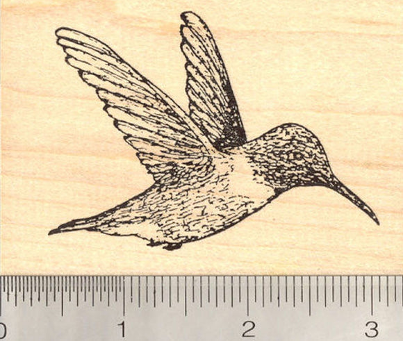 Hummingbird Rubber Stamp, in Flights, Wings Back