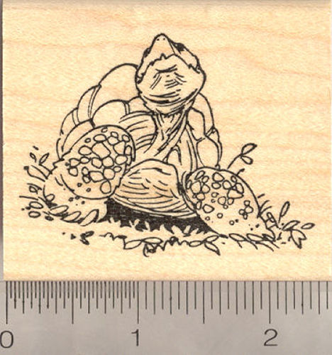 Tortoise Rubber Stamp