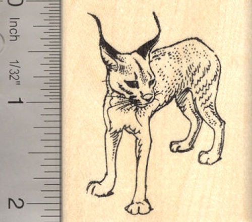Caracal Cat Rubber Stamp