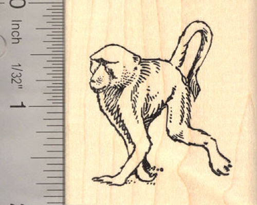 Baboon Monkey Rubber Stamp