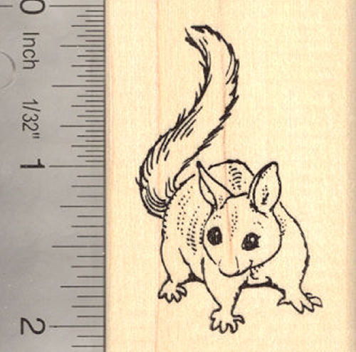 Common Brushtail Opossum Rubber Stamp