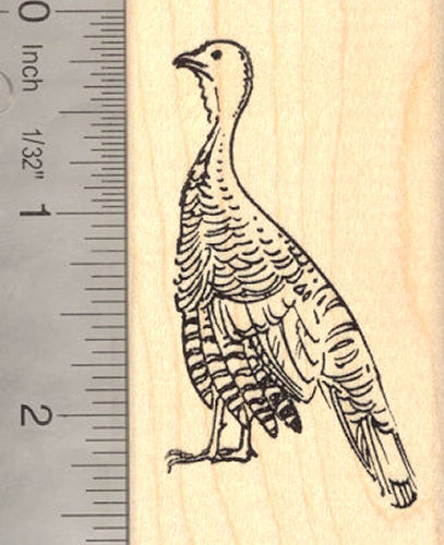 Turkey Rubber Stamp Thanksgiving