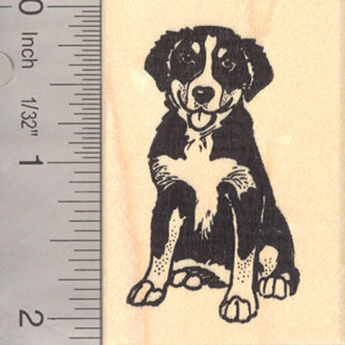 Bernese Mountain Dog Rubber Stamp