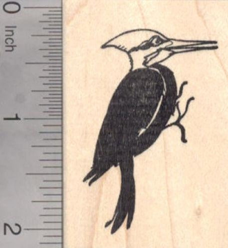 Pileated Woodpecker Rubber Stamp