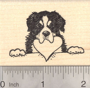 Bernese Mountain Dog Rubber Stamp, With Heart in Mouth, Valentine's Day