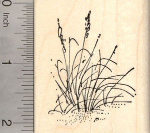 Cattail Rubber Stamp, AKA Bulrush, Reedmace, Catninetail, Beach Themed Stamps
