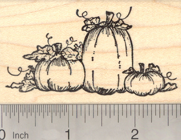Pumpkin Patch Rubber Stamp, Halloween or Fall Series