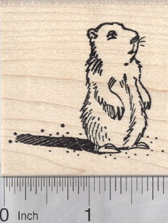 Groundhog Day Rubber Stamp, Marmot with Shadow