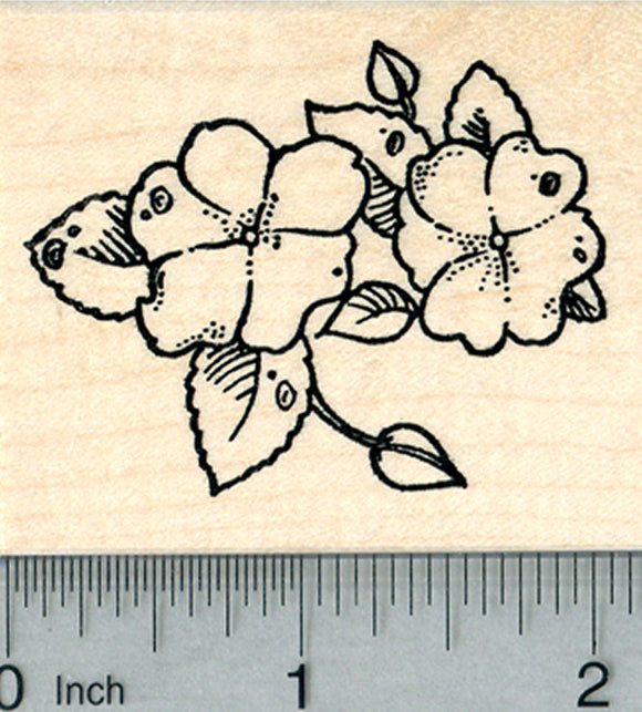 Impatiens Flower Rubber Stamp, Summer Floral Series, Touch me not