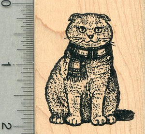 Scottish Fold Rubber Stamp, Cat in Scarf