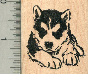 Husky Puppy Rubber Stamp, Dog