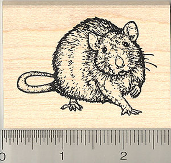 Rat Rubber Stamp, Realistic Pet Art