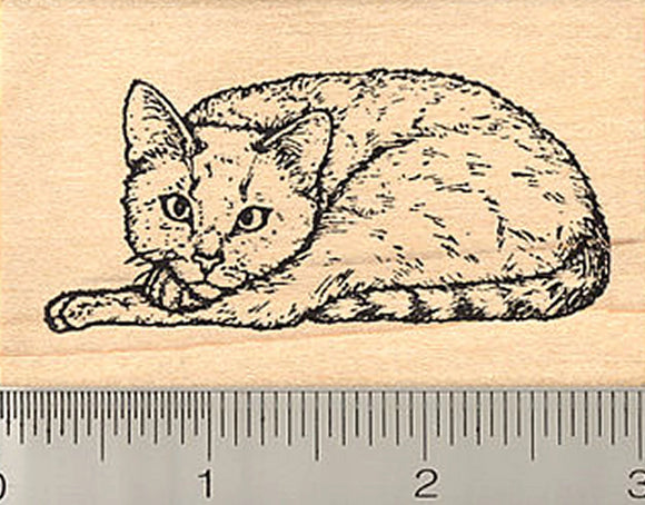 Cat Rubber Stamp, Mackerel Tabby Point