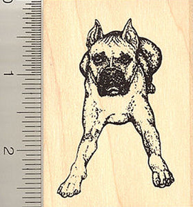 Boxer Dog Rubber Stamp