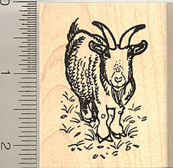 Horned Bearded Goat Rubber Stamp, Saanens