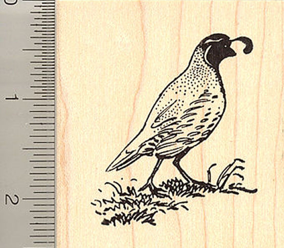 Quail Rubber Stamp H9013
