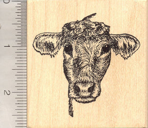 Cow Rubber Stamp, Cattle Portrait
