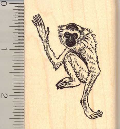 Gibbon Rubber Stamp