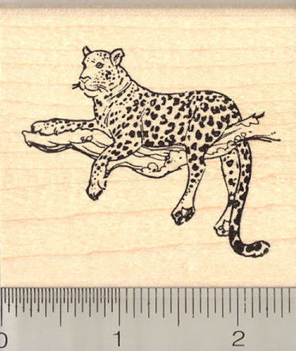 Leopard in Tree Rubber Stamp