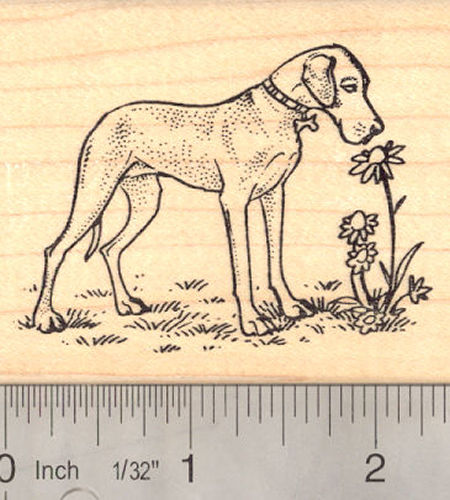 Great Dane with Flowers Rubber Stamp