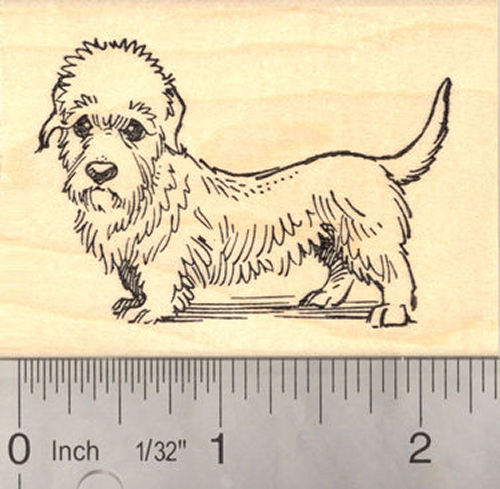 Dandie Dinmont Terrier Dog Rubber Stamp, Scottish Dog Breed