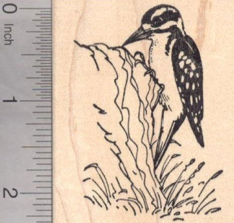 Downy Woodpecker Rubber Stamp
