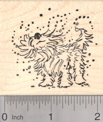 Wet Dog Rubber Stamp, Summer Fun at the Pool